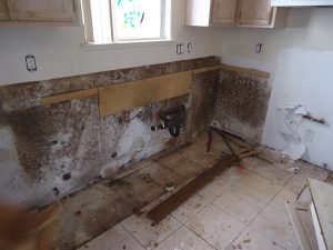 Bad Mold Behind Washer