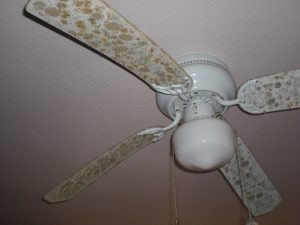 Mold-covered Ceiling Fan