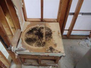 Mold Found under water Heater apt remodel